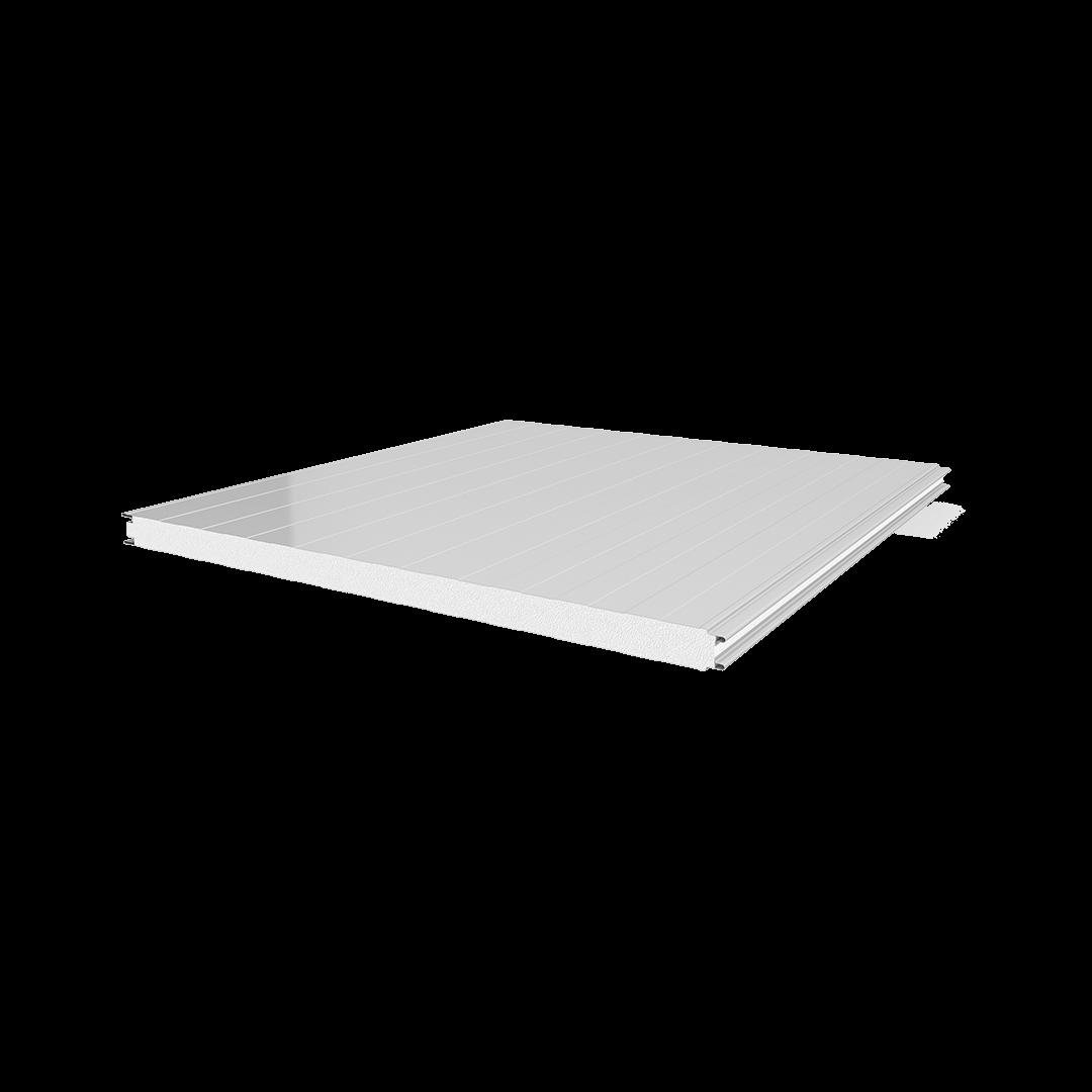Panneau de type planche-tôle EPS pour chambre froide